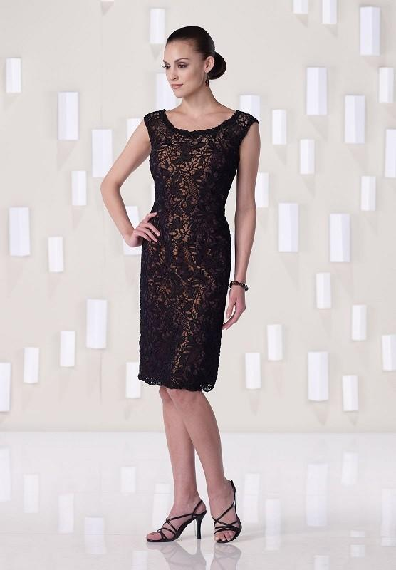 04ecae3c11c Sheath Column Scoop Neck Knee-Length Cocktail Dresses With Lace  (016215028). Loading zoom