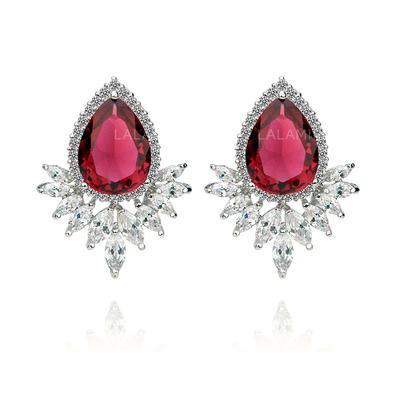 Earrings Zircon/Platinum Plated Pierced Ladies' Gorgeous Wedding & Party Jewelry (011164918)