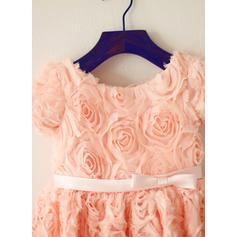 Col rond Forme Princesse Robes de demoiselle d'honneur - fillette Dentelle Fleur(s)/À ruban(s) Manches courtes Longueur genou (010212164)